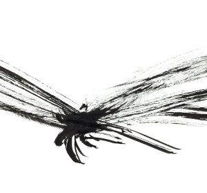 libelle-inkt-tekening-inktsecten