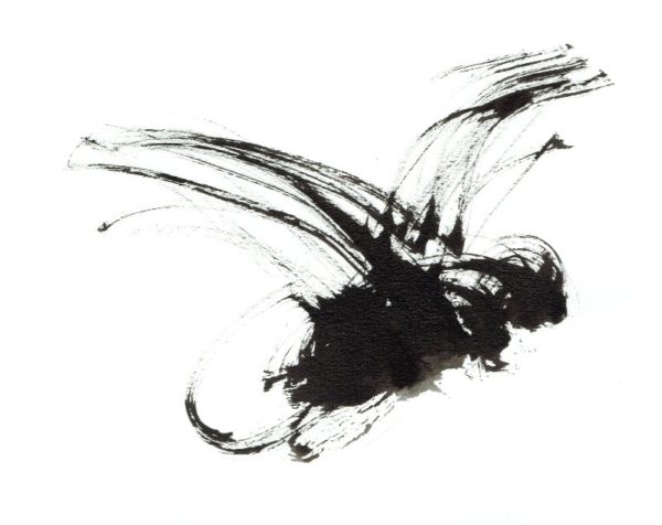 inkt-tekening-vlieg